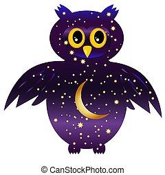 bagoly, festett, owl-night., ég, fiatal, hold, körvonal, csillaggal díszít, éjszaka