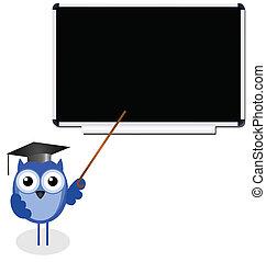 bagoly, tanár