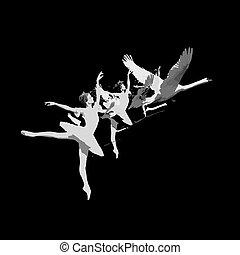 balerina, hattyú, havibaj