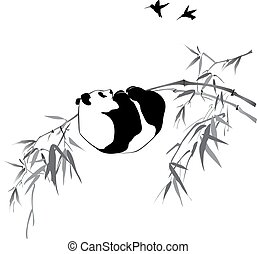 bambusz, panda, elágazik