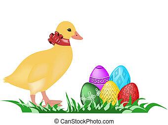 barka, húsvét
