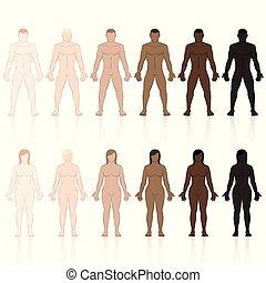 barna, becsületes, fekete, hulla, női, bőr, hím, írógépen ír