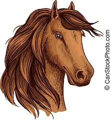 barna, fej, csikó, ló, vektor, díszgomb, skicc, vagy