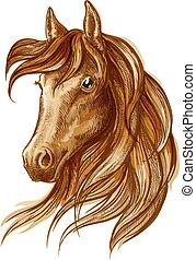 barna ló, lovaglási, csődör, tervezés, ikon
