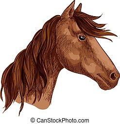 barna ló, versenyló, csődör, vektor, állat, ikon