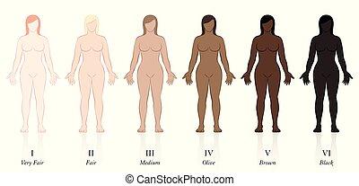 barna, nő, becsületes, fekete, bőr, szőke, sápadt, írógépen ír