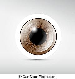 barna, szem, elvont, szürke, vektor, háttér