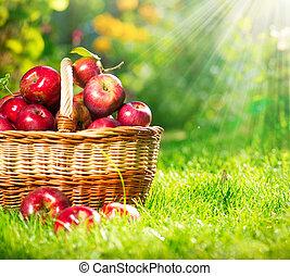 basket., szerves, orchard., kert, alma