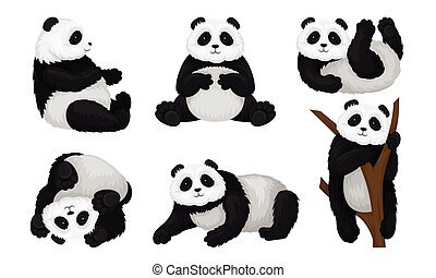 beállít, fa, hord, set., különböző, vektor, mászó, állat, panda, föld, felfordított, fordítás