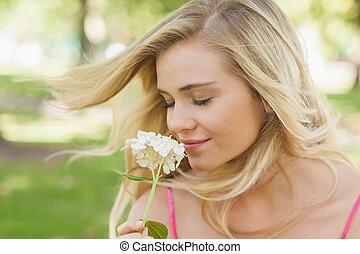 befogadóképesség, virág, nagyszerű, szaglás, nő, sűrű szem