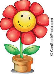 belső, virágedény