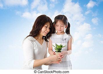 berendezés, törődik, bevétel, család, ázsiai