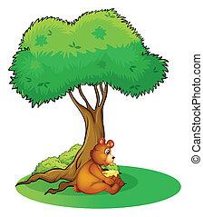 bevétel, fa, állat, maradék, alatt