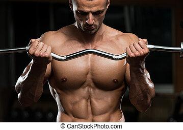 bicepsz, ember, fiatal, munka munka