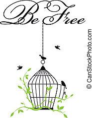 birdcage, nyílik, madarak, szabad