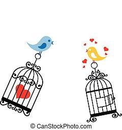 birdcage, szeret madár