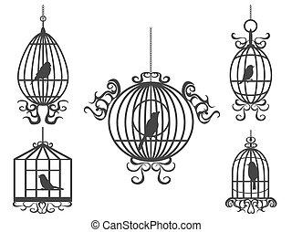 birdcage, vektor, madarak