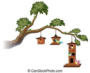 birdhouses, madarak, elágazik