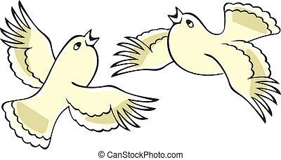 birds., éneklés