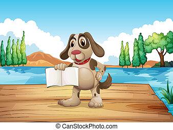 birtok, könyv, üres, rév, álló, kutya