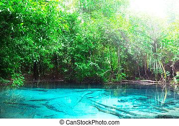 blue erdő, mély, tó