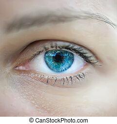 blue szem, nő, macro., vektor