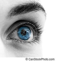 blue szem