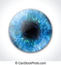 blue szem, vektor, macro., szembogár