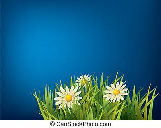 blue virág, zöld fű, háttér