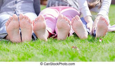 boldog, fű, liget, fekvő, csoport, zöld, gyerekek