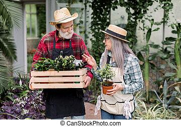 boldog, kalapok, fából való, öregedő, 70-s, gyalogló, beszéd, fárasztó, nő, kellemes, doboz, mindegyik, ember, kertész, tarka, ősz hajú, más, belső, szalmaszál, ing, melegház, virágcserepek