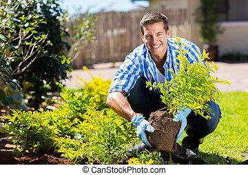 boldog, kertészkedés, fiatalember