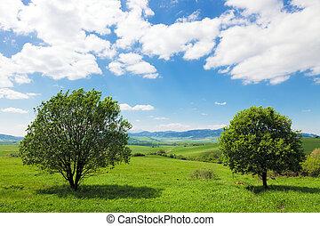 bolygó földdel feltölt, zöld, -