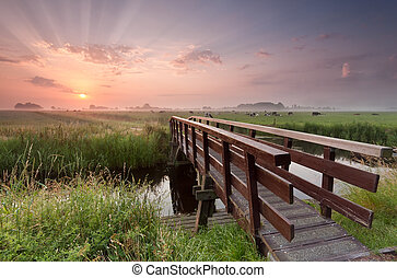 bridzs, felett, bicikli, folyó, napkelte