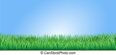 buja, fű, zöld, ábra
