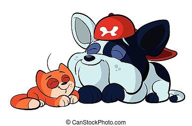 bulldog, csinos, piros, macska