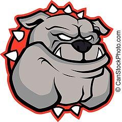 bulldog, fej, kabala