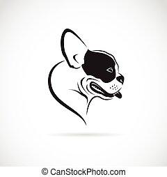 (bulldog), kép, kutya, vektor, háttér, fehér