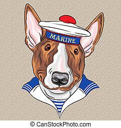 bullterrier, tengerész, vektor, karikatúra, kutya, furcsa, csípőre szabott