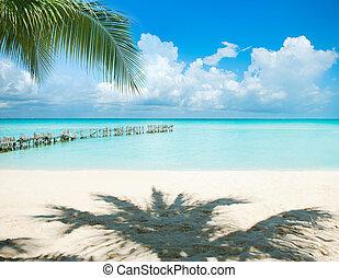 caribbean szünidő, nap, concept., horgonykapák, island., idegenforgalom