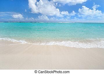 caribbean tengerpart