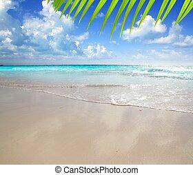 caribbean, visszaverődés, fény, reggel, homok, nedves, tengerpart