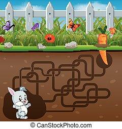 carrot!, segítség, üregi nyúl, talál