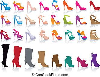 cipők, vektor, állhatatos, színes
