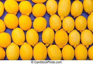 citromfák