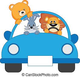 coche2-color-azul