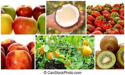 coll, gyümölcs, különféle, bitófák, gyümölcs