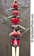 coxed, négy