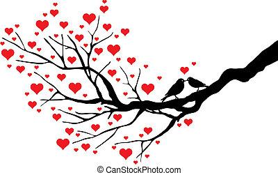 csókolózás, madarak
