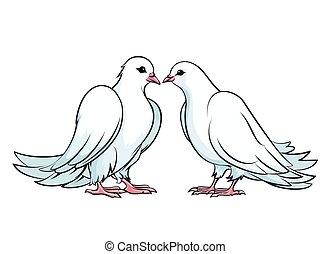 csókolózás, párosít, gerle